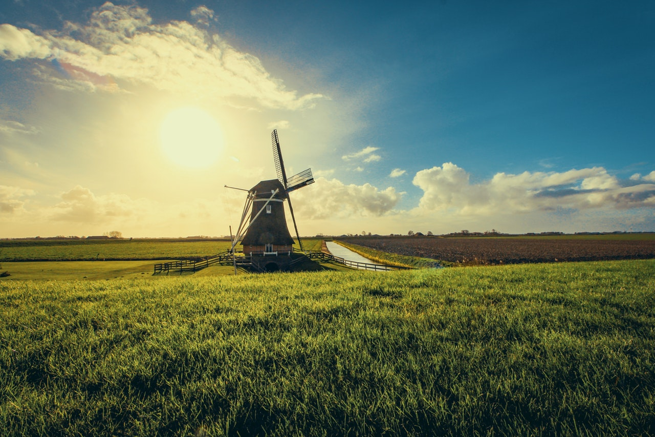 Welcome To Holland – A Printable Handout About Raising A Disabled Child
